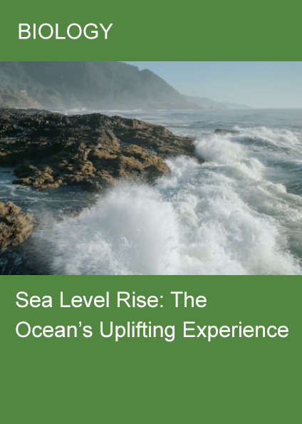 Sea Level Rise: The Ocean's Uplifting Experience